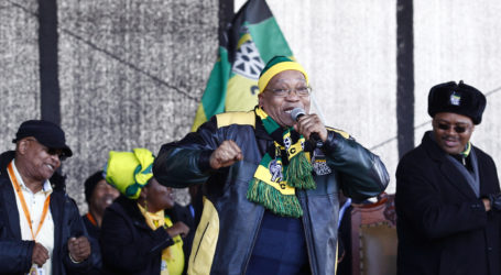 Let's win Cape Town back – Zuma