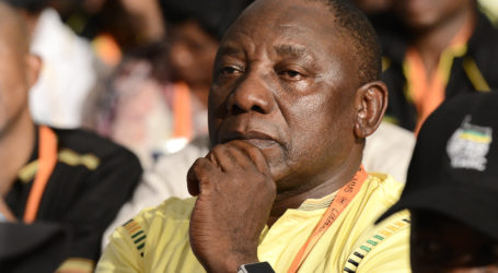 'ANC will rise to the top again…'